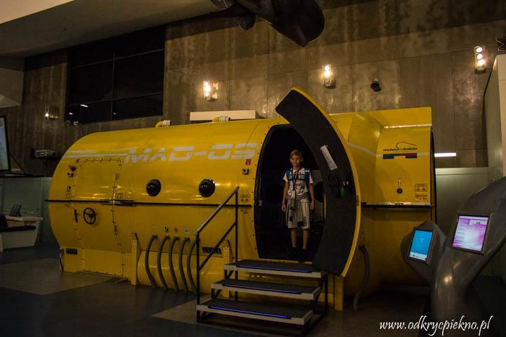 Muzeum Wieloryba