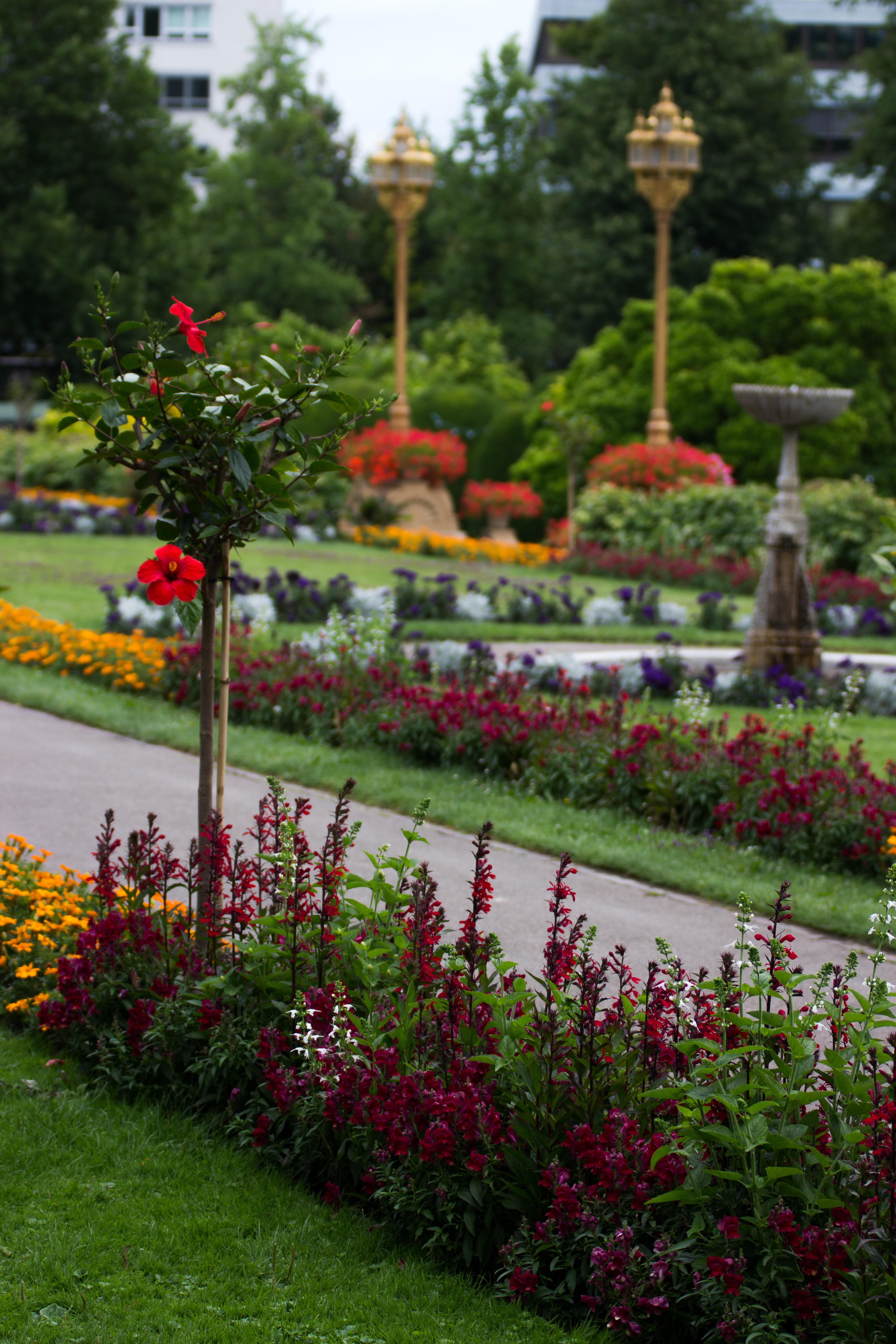 Ogród Botaniczny Wilchelma